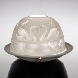 Dome Light Cisnes