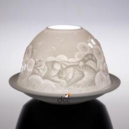 Dome Light Gatos domésticos*