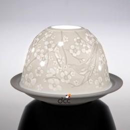 Dome Light Heraldos de la...